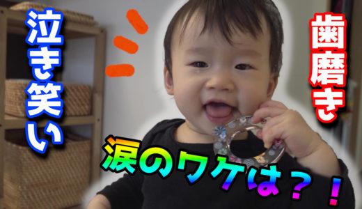 単語が分かり始めた1歳児に必死に英語を聞かせてはみるけど効果あるのかな