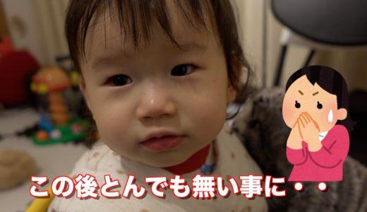 1歳半の娘が最近ご飯を食べず大人のごはんを欲しがるようになってきた